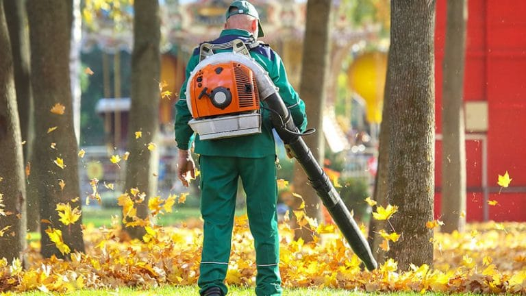 The Fall Is A Great Time To Give Your Lawn Some Attention