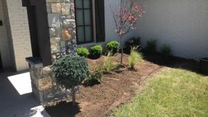 Side Garden After Photo