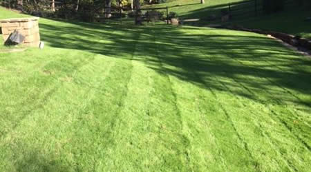 Lawn Care Services Tulsa Oklahoma